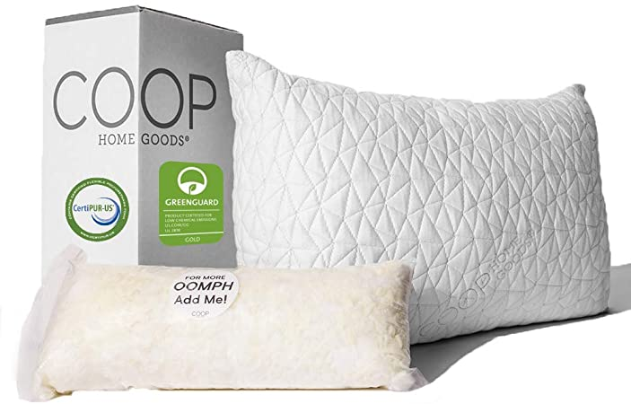Coop Home Goods Bamboo Pillow